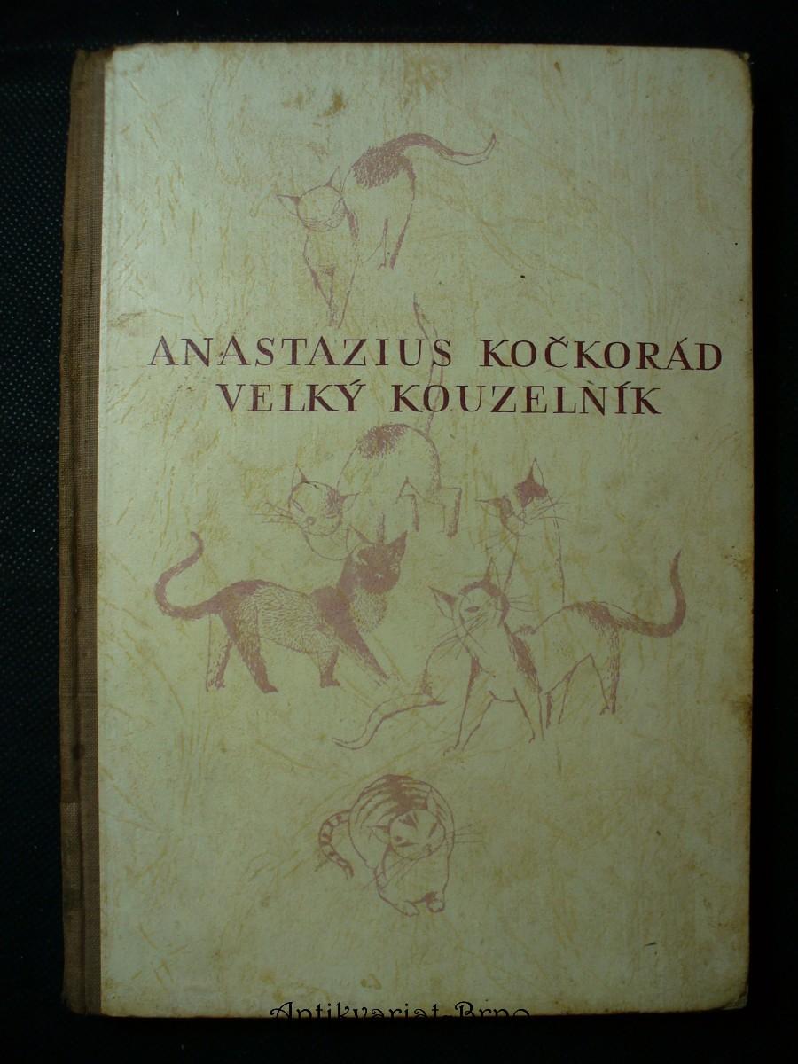 Anastazius Kočkorád, velký kouzelník : veselá pohádková historie pro malé i velké