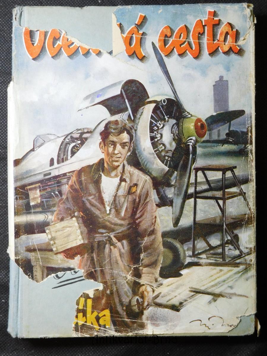Ocelová cesta : román vytrvalého chlapce