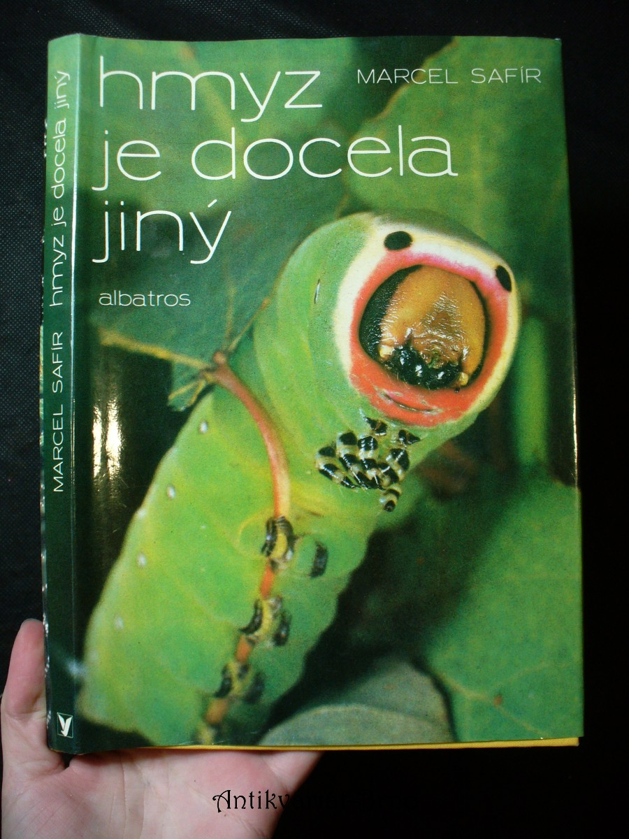 Hmyz je docela jiný : pro čtenáře od 12 let