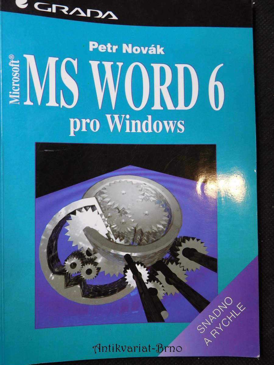 MS Word 6 pro Windows : snadno a rychle