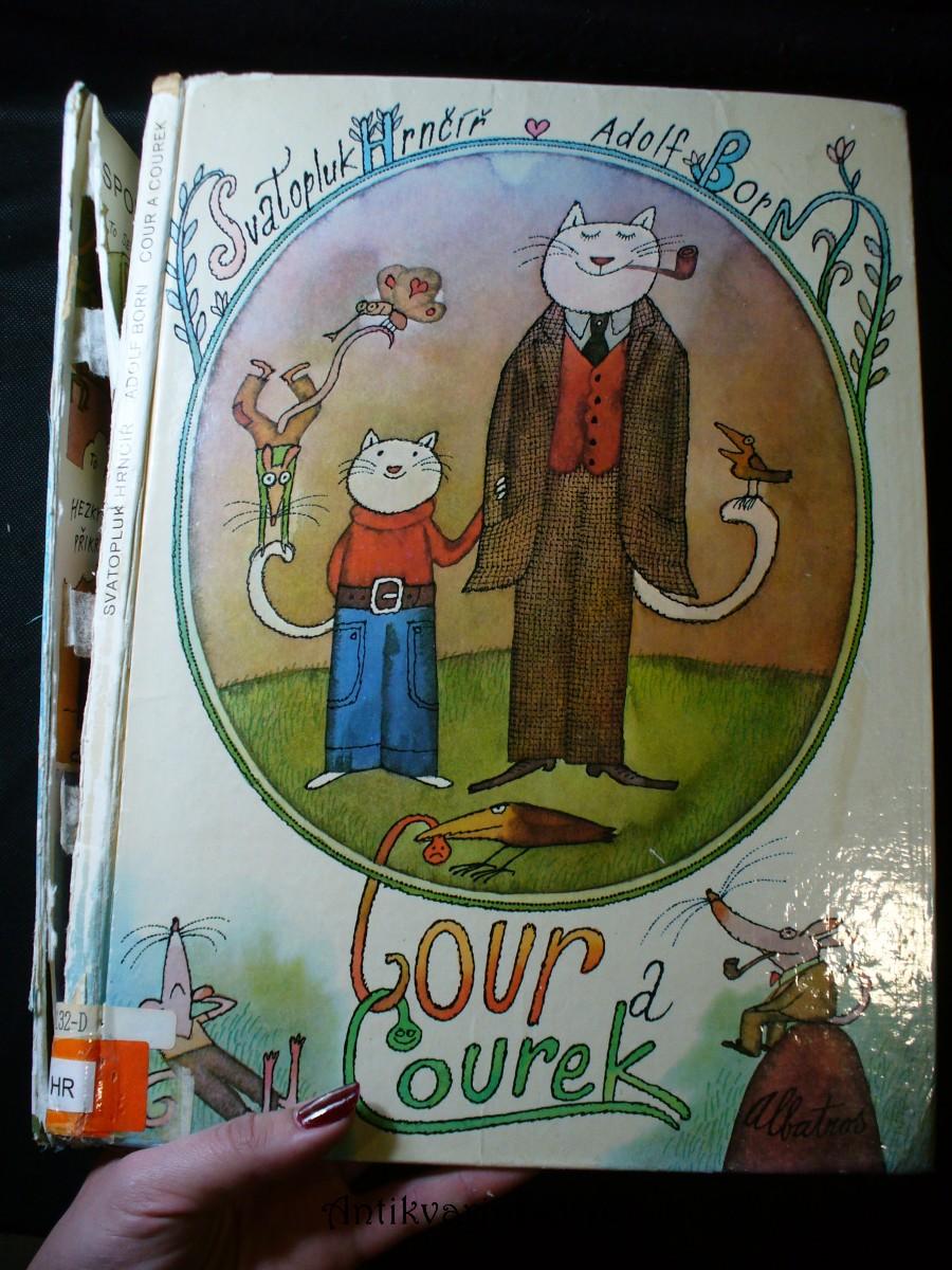 Cour a Courek