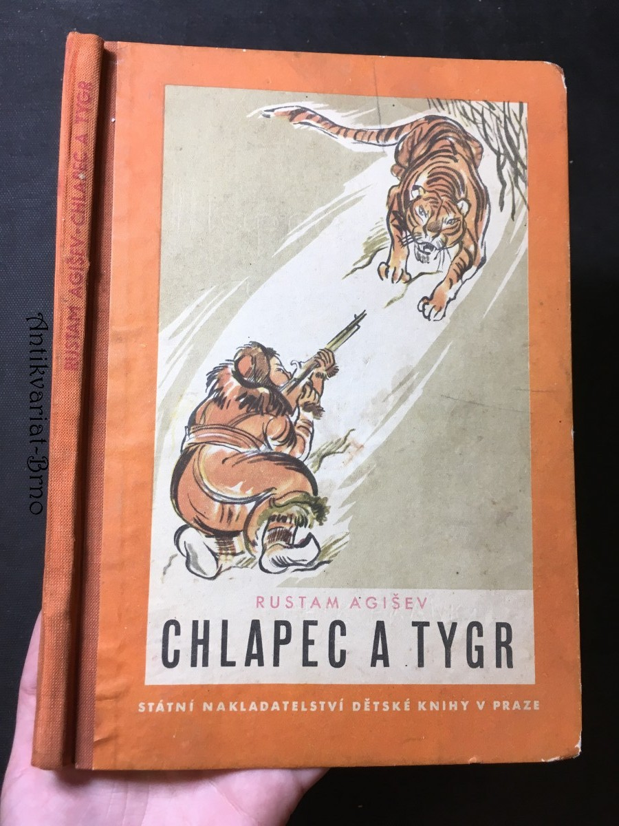 Chlapec a tygr