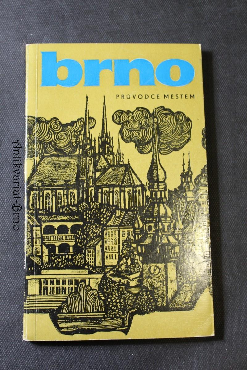 Brno : průvodce městem