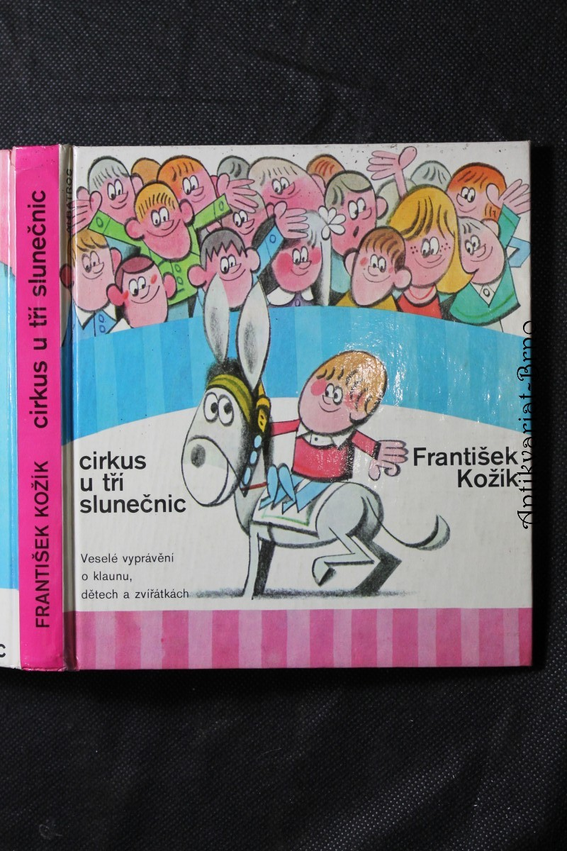 Cirkus U tří slunečnic : veselé vyprávění o klaunu, dětech a zvířátkách : pro čtenáře od 7 let