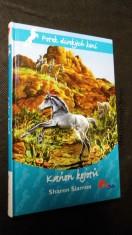 náhled knihy - Kaňon kojotů