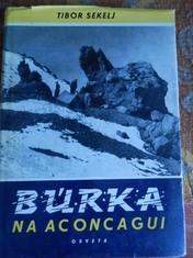 náhled knihy - Burka na Aconcagui