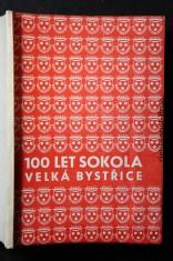 náhled knihy - 100 let Sokola. Velká Bystřice
