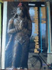 náhled knihy - V Indii