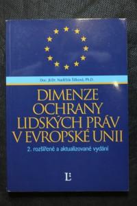 náhled knihy - Dimenze ochrany lidských práv v Evropské unii