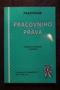 náhled knihy - Praktikum pracovního práva