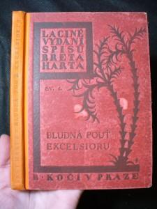 náhled knihy - Bludná pouť Excelsioru II.
