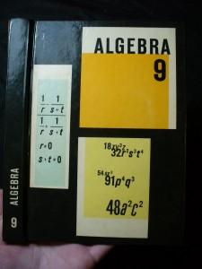 náhled knihy - Algebra pro devátý ročník