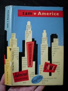 náhled knihy - Tam v Americe