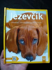 náhled knihy - Jezevčík : jak o něj správně pečovat a jak mu rozumět : rady odborníka ke správnému chovu