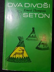 náhled knihy - Dva divoši : o dobrodružstvích dvou chlapců, kteří žili jako Indiáni a o tom, co všechno se naučili