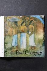 náhled knihy - Paul Gauguin : [Malá monografie]