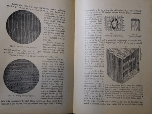 náhled knihy - Chemická technologie dřeva : rostlinný vývoj, chemické složení a zpracování dřeva, jakož i technická úprava uměleckých výrobků pro truhláře, soustružníky, řezbáře, košikáře, natěrače, pozlacovače, malíře, techniky, chemiky, lesníky, stavitele a ku potřebě na průmyslových školách odborných a pokračovacích