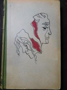 náhled knihy - Omyl