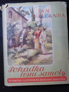 náhled knihy - Pohádka lesní samoty