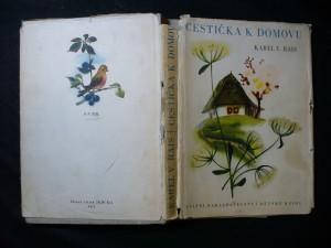 náhled knihy - Cestička k domovu