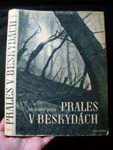 náhled knihy - Prales v Beskydách