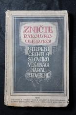 náhled knihy - Zničte Rakousko-Uhersko!