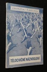 náhled knihy - Tělocvičné názvosloví : Cvičení prostných a cvičení na nářadí v obrázcích