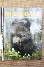 náhled knihy - Méďové : půl roku s medvědími kluky