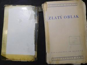 náhled knihy - Zlatý oblak : román