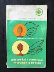 náhled knihy - Pěstování a zužitkování meruněk a broskví