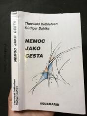 náhled knihy - Nemoc jako cesta: vklad a výklad klinických obrazů nemoci