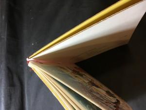 náhled knihy - Jaro, léto, podzim, zima