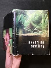 náhled knihy - Akvarijní rostliny