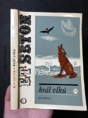 náhled knihy - Král vlků