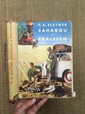náhled knihy - Saharou a pralesem : dobrodružství kapesního automobilu, který se pokusil o světový rekord mezi Prahou, rovníkem a Prahou