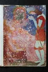 náhled knihy - Šípková Růženka