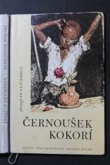 náhled knihy - Černoušek Kokorí : pro malé čtenáře