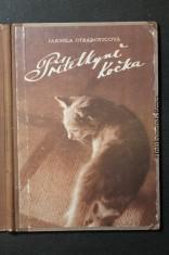 náhled knihy - Přítelkyně kočka : obrázky ze skutečnosti