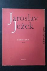 náhled knihy - Ježek. Sonatina