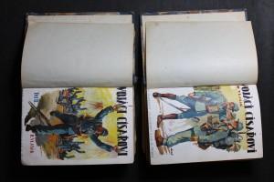náhled knihy - Vojáci císařovi : vzpomínky jednoho z mnohých. Díl I., II.