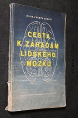 náhled knihy - Cesta k záhadám lidského mozku