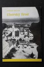náhled knihy - Uherský Brod : Průvodce městem Komenského