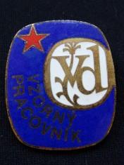 náhled knihy - Odznak Vzorný pracovník VD smalt