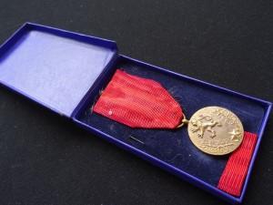 náhled knihy - Medaile za službu vlasti ČSR