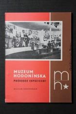 náhled knihy - Muzeum Hodonínska : průvodce expozicem