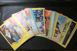 náhled knihy - 35 x Sedmička pionýrů : Čtení pro chlapce a děvčata na 7 dní