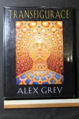 náhled knihy - Transfigurace