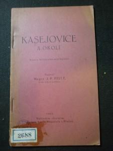 náhled knihy - Kasejovice a okolí