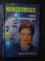 náhled knihy - Numerologie  cesta k sebepoznání