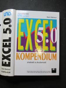 náhled knihy - Excel 5.0 Kompendium znalostí a zkušeností